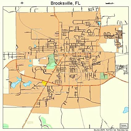 Brooksville Florida Map.Amazon Com Large Street Road Map Of Brooksville Florida Fl