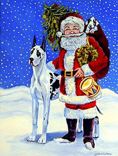 Harlequin Santa (Caroline's Treasures 7083GF Harlequin Great Dane with Santa Claus Flag, Small, Multicolor)