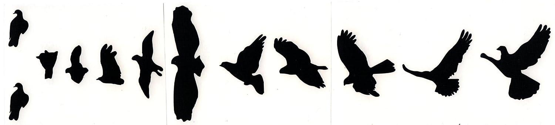 Birds Fret Markers Stickers Inlays Vinyl Guitar & Bass Pegatinas Guitarra (rojo): Amazon.es: Instrumentos musicales