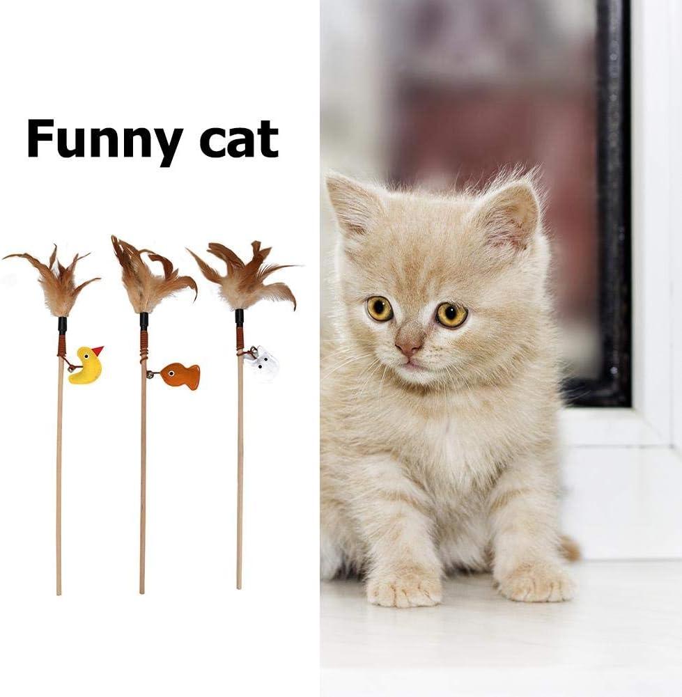 Amarillo tioeqioan Feather Cat Stick Teaser Wand Reproducci/ón de ca/ña Mascota Gatos Juguete Interactivo