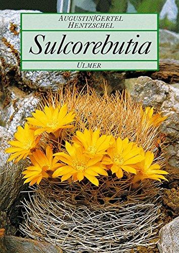 Sulcorebutia. Kakteenzwerge der bolivianischen Anden (Pflanzen-Monographien)