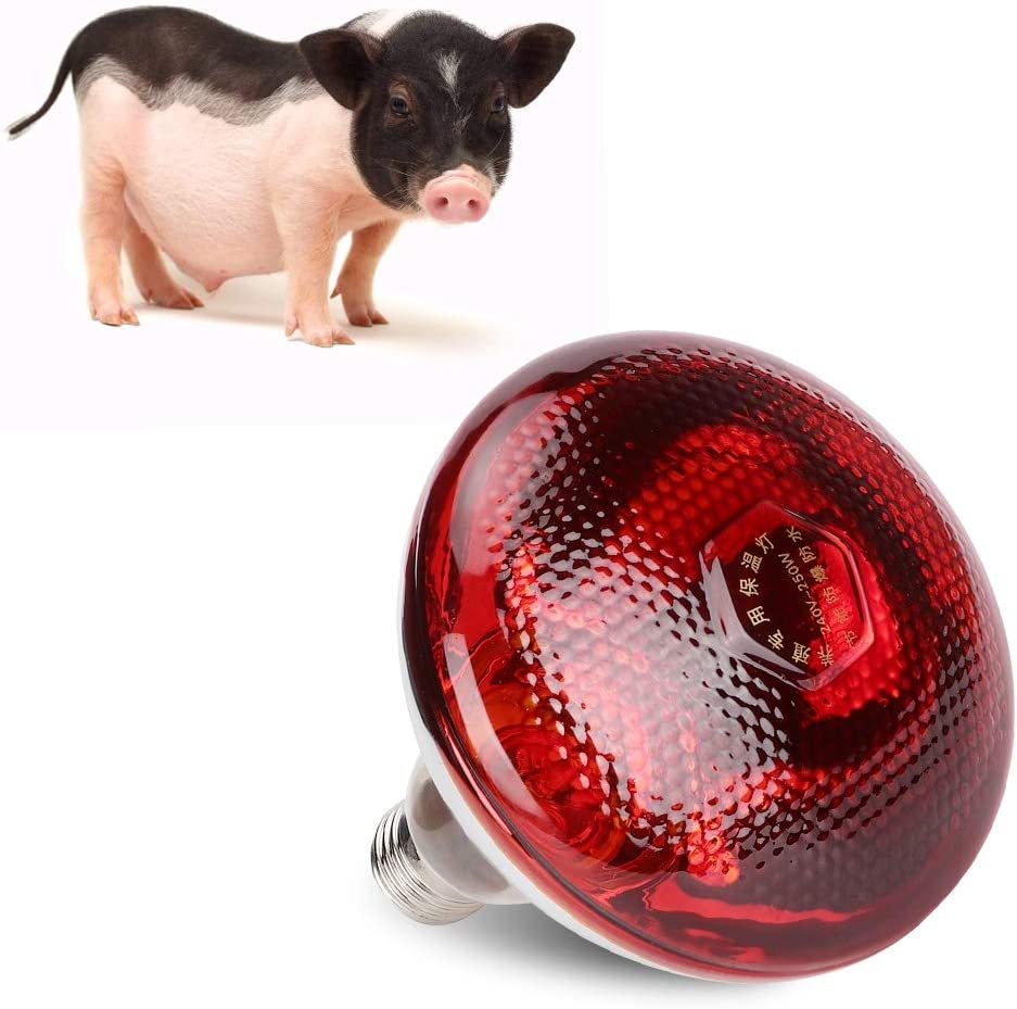 Yosooo Chicken Coop Heater,Heat Lamp Red Hard Glass Light Bulb for Chicken Pig Farm Pets Physiotherapy Bathroom in Winter E27 Base