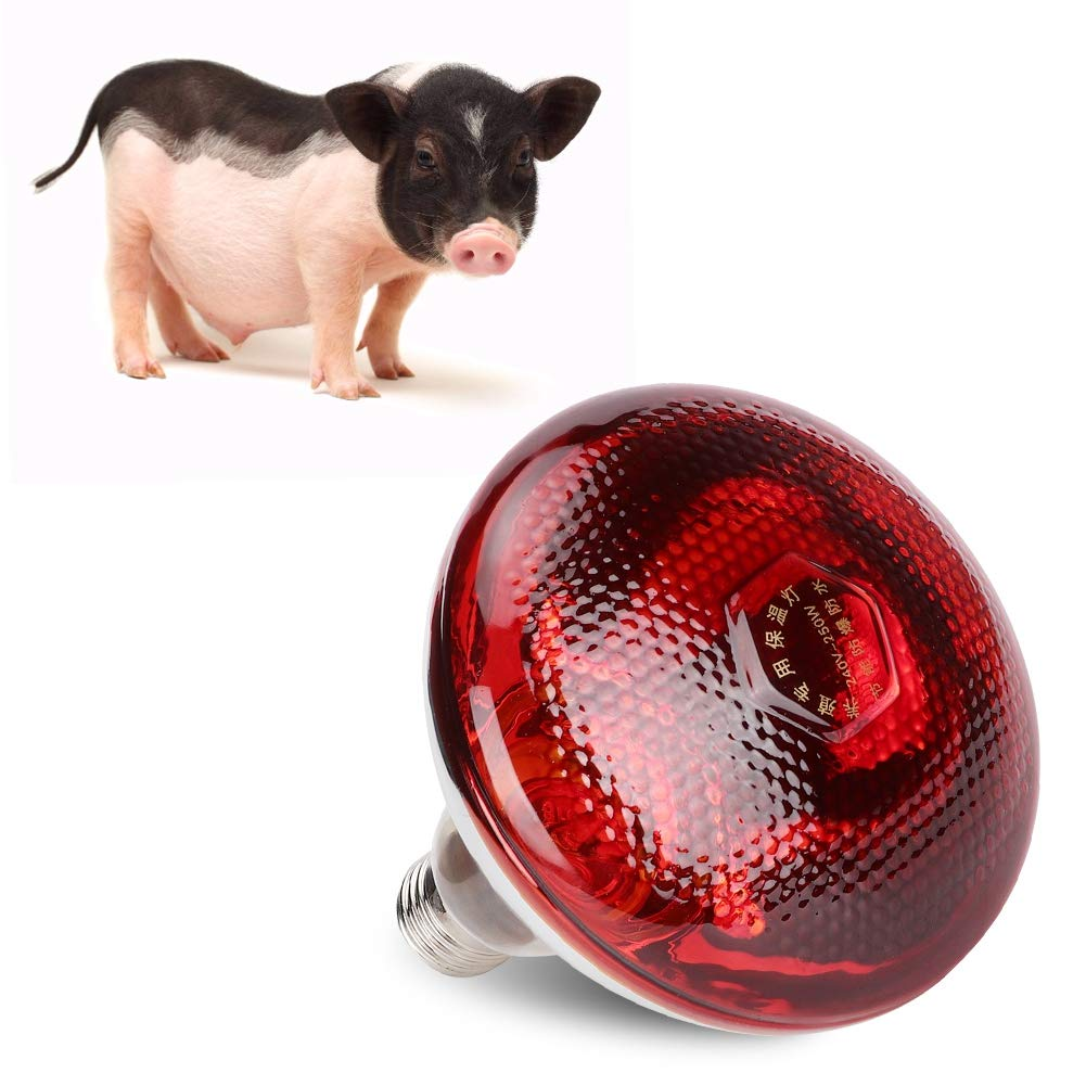 E27 Poultry Preservation Heat Lamp, Energy Saving Poultry Infrared Bulb, Waterproof, Explosion-proof and Crash-proof, Animal Heating Use(200W/250W)(B)