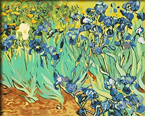 FramedPBN Paint By Number Kits After Vincent Van Gogh's Iries 13.4