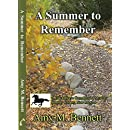 A Summer to Remember (Blackhorse Campground Mysteries Book 5)