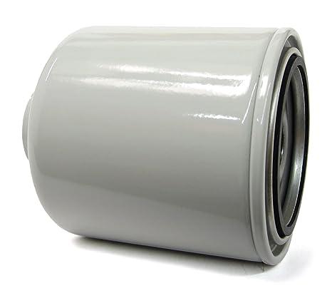 Amazon.com: ACDelco TP1289 Professional Fuel Filter: Automotive