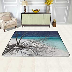 Driftwood Office Chair Mat for Carpet 5' x 8', Seascape Theme Driftwood on The White Sandy Beach Coastal Digital Image HD Printed Rug, Turquoise and Blue