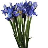 AerWo 5Pcs Artificial Silk Flower Bridal Real Touch Iris Flower for Wedding Party Banquet Home Decoration Blue Purple