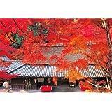 1000ピース ジグソーパズル めざせ!パズルの達人 嵯峨野茶屋の秋-京都(50x75cm)