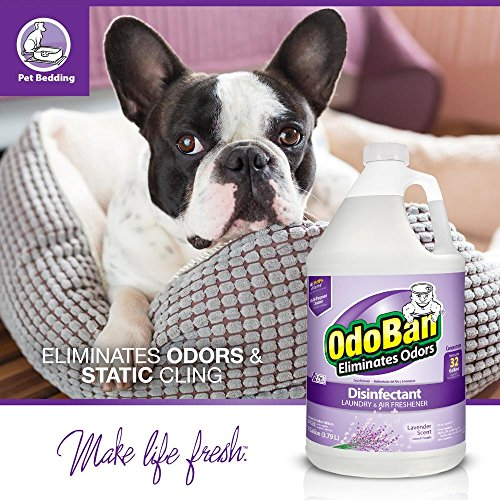 OdoBan Disinfectant Odor Eliminator and All Purpose Cleaner Concentrate, 5 Gal Scent Assortment by OdoBan (Image #10)