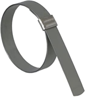 100 Per Box 13//16 Diameter 13//16 Diameter Clamp BAND-IT JS2019 Junior 3//8 Wide x 0.025 Thick 201 Stainless Steel Smooth I.D