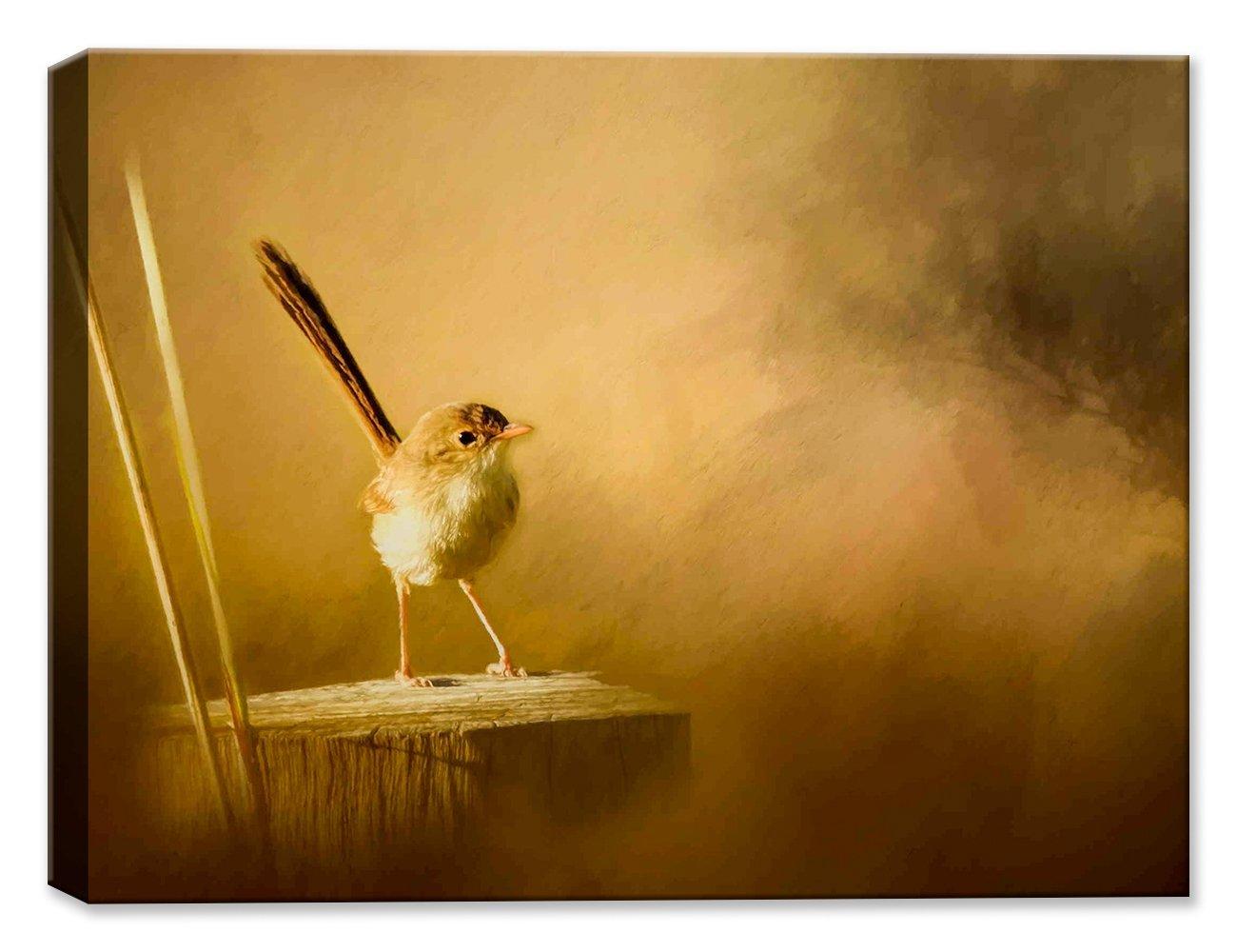 Amazon.com : Brown Wren on Post - Fine Art Canvas Print - Indoor ...