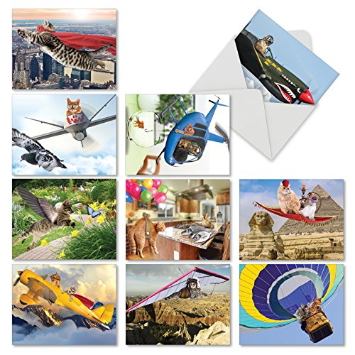 M6450OCB Flying Felines: 10 Assorted Blank All-Occasion Note Cards Featuring Cute and Adorable Kitties Engaged in Fanciful Flying Antics, w/White (American Mail Airplane)