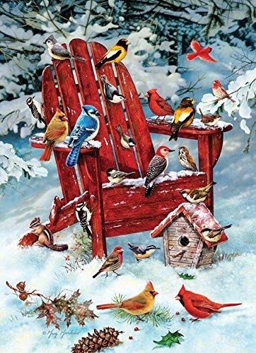 (Adirondack Birds)
