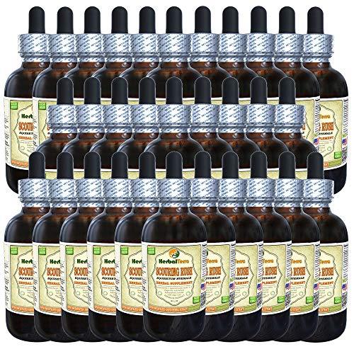 Scouring Rush (Equisetum Hyemale) Tincture, Organic Dried Herb Liquid Extract (Brand Name: HerbalTerra, Proudly Made in USA) 30x2 fl.oz (30x60 ml)