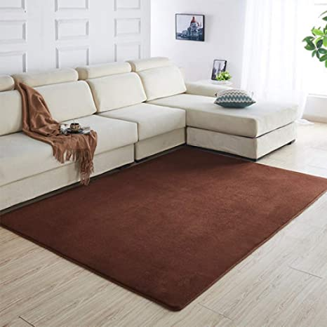 Amazon.com: Coral Velvet Carpet Living Room Coffee Table ...
