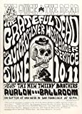 Grateful Dead 1966 Concert Poster, Avalon BallroomMint Condition (FD-12)