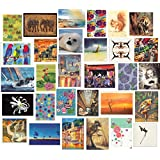 Bumper Selection Pack of 30 Blank Greeting Cards