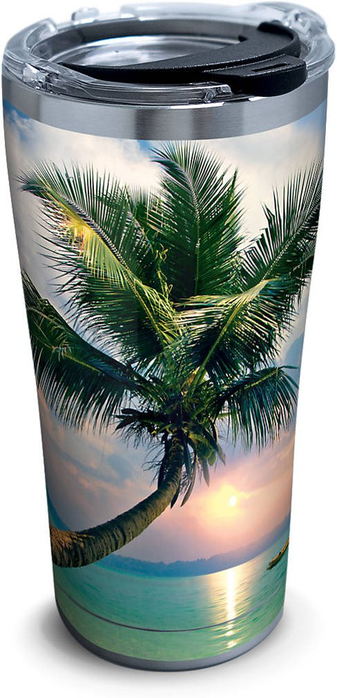 Tervis 1261333 Sunset In Paradise Stainless Steel Tumbler with Clear and Black Hammer Lid 20oz, Silver