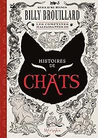 Billy Brouillard - Les comptines malfaisantes, tome 3 : Histoires de chats par Guillaume Bianco