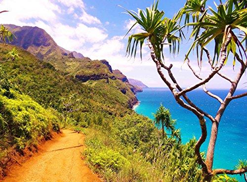 Adult Jigsaw Puzzle Kauai Island Hawaii Nāpali Coast State Wilderness Park 500-Pieces