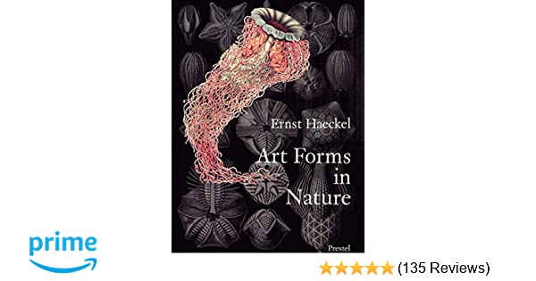 Art Forms In Nature The Prints Of Ernst Haeckel Ernst Haeckel