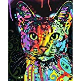 LIUDAO Diy Paint by Numbers Kids Beginner without Frame,Paint by Number Kits Colorful Animals Painting on Canvas 16x20inch-Colorful Cat Pattern With 3 Brushes & Bright Colors