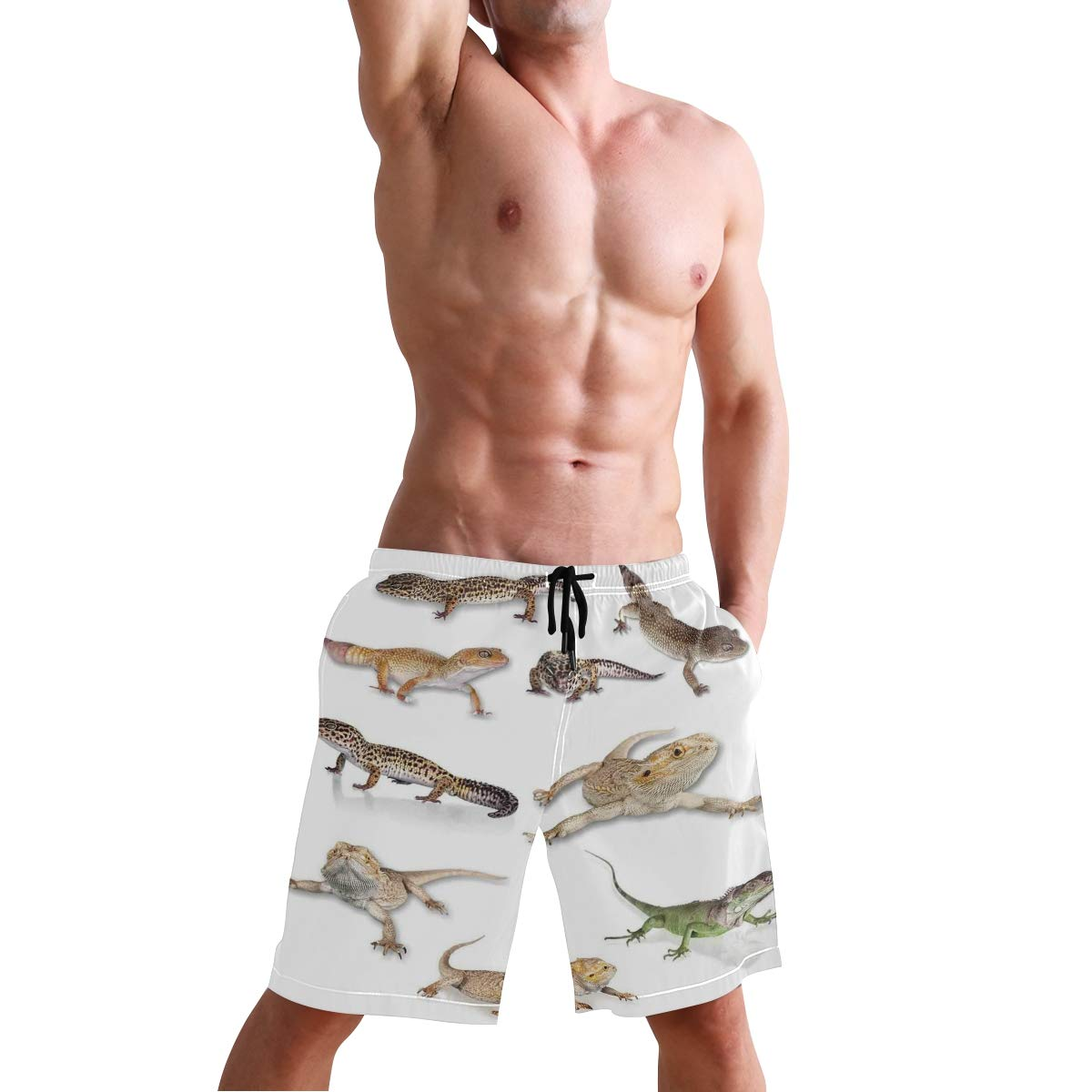 COVASA Mens Summer ShortsReptiles Multi Colored Staring Leopard Gecko Family I