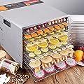 DPThouse 10-Tray Electric Food Dehydrator Stainless Steel /w Blower Jerky Fruit Vegetable Preserve Dryer