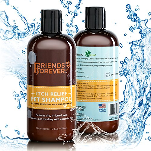 Friends Forever Natural Dog Shampoo for Dry Itchy Skin - Oatmeal Aloe Vera Pet Shampoo for Dog Wash with Flaxseed, Tea Tree and Lavender Oil ()