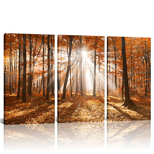 Giclee Canvas Prints Maple Trees Forest Picture Nature Landscape Canvas Wall Art Home Decor Framed and Stretched Prints Artwork For Office Bed Room Ready to Hang 16