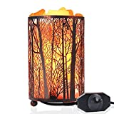 Natural Himalayan Salt Lamp,Air Purifying Pink Salt Rock Lamp Night Light in Forest Design Metal Basket with Dimmer Switch (4.1 x 6.5'' 4.4-5lbs),25Watt Bulbs & ETL Cord
