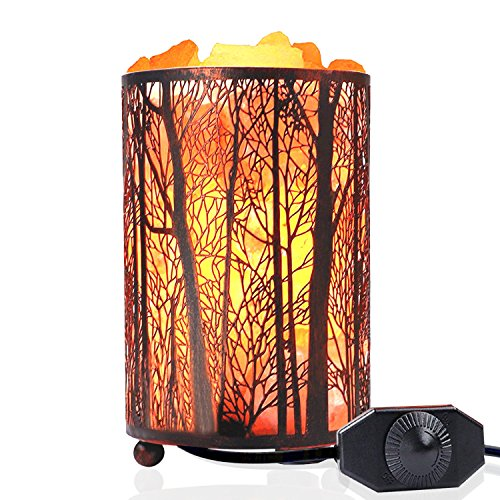 Natural Himalayan Salt Lamp, Shineled Natural Himalayan Pink Rock Salt Lamps Night Light in Metal Basket with Dimmer Switch (4.4-5lbs, 4.1x6.5), 25Watt Bulb