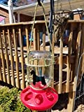 Mason jar Bird Feeder custom design