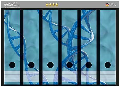 Archivador de la parte de la espalda adhesivo de ADN-cadena de colour azul en