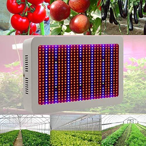 Amazon.com: F.T.S. Lámpara de jardín de 240 W de espectro ...