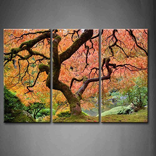 vas Print Wall Art- Old Japanese Maple Tree With Pink Leaf Wall Art - Stretched By Wooden Frame - Tree Picture for Home Decor - Ready to Hang - Gift ()