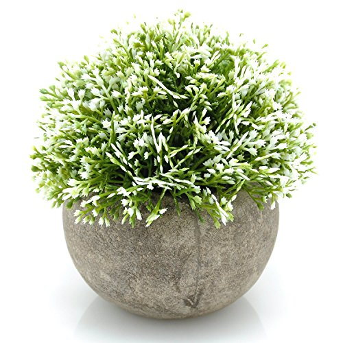 Velener Mini Plastic Artificial Plants in Pots for Home Decor (White, Green)