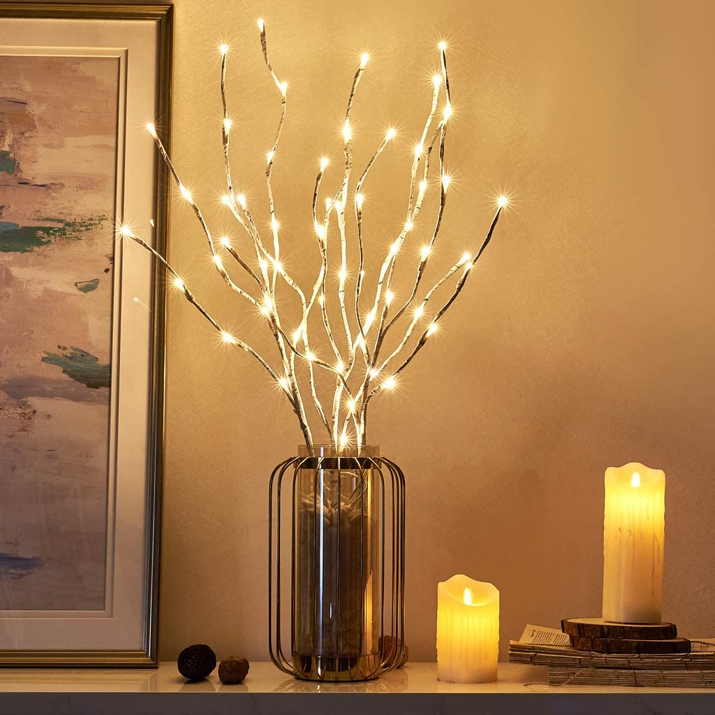 EAMBRITE Pre Lit White Birch Twig Branch Lights 30IN 60LT Plug in Lighted Willow Branch for Home Holiday Party Wedding Spring Decoration Indoor and Outdoor Use (Vase Excluded)