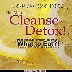 Lemonade Diet Audiobook