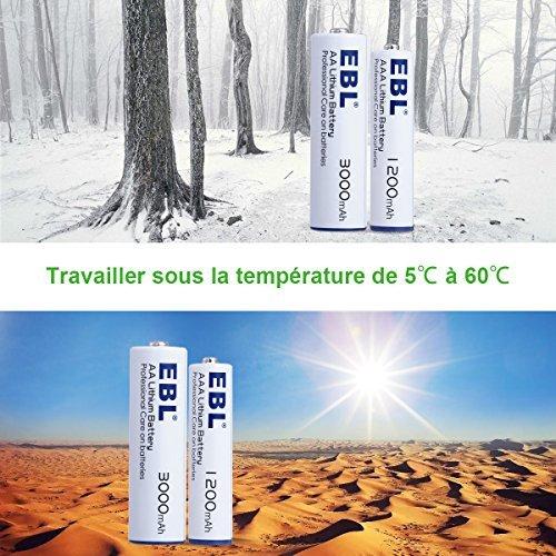 EBL Lot de 8 Batteries en Lithium Piles Type AA Non Rechargeables 1.5V/3000mAh