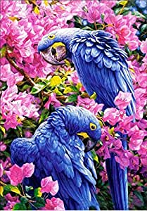 Colour Talk Diy 5D Diamond Embroidery Oil Painting, Two Parrots Diamond Painting Cross Stitch Kits Diamond Mosaic Home Decor