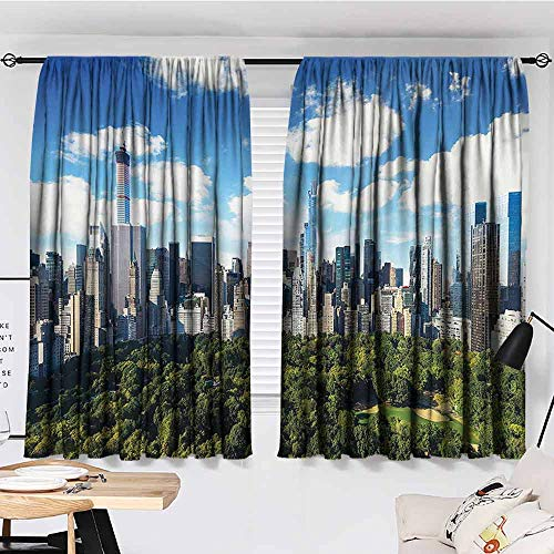BE.SUN Balcony Curtains,NYC Decor Collection,Simple Stylish,W96x77L Inches Green Blue White (Balcony With Nyc Hotel)