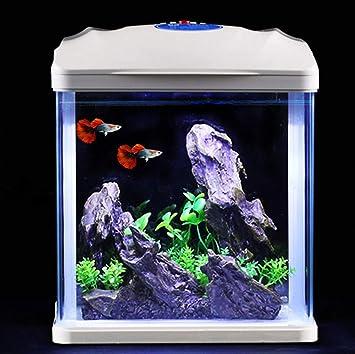 JIAN Acuario de Vidrio - pequeña Sala de Estar de Escritorio, ahorrador de Agua, Acuario ecológico -23 * 16 * 27 cm - negro2-negro2: Amazon.es: Hogar