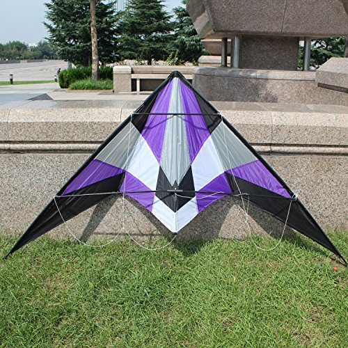 Purple Kite Flying Itself With A Simple Handle Working-classoutdoor Fun Sports , Good Flying, Sounds Great! Full Streamlined - Working Outside Best Sunglasses For
