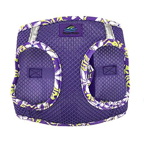 an River Choke Free Dog Harness Hawaiian Trim (XS, Paisley Purple) ()