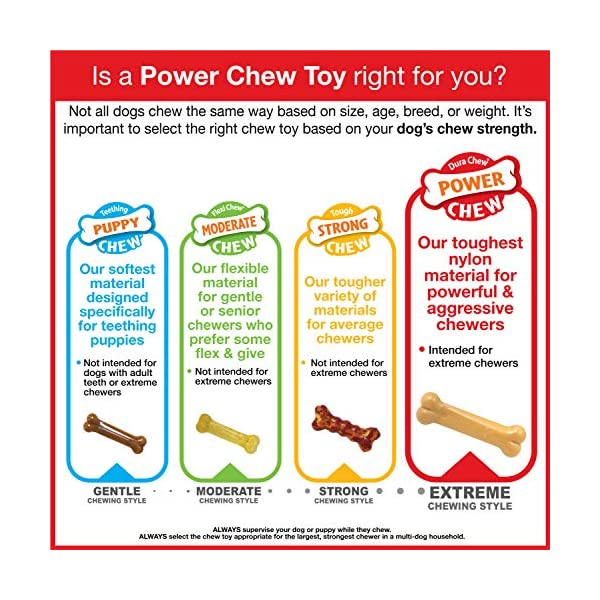 Nylabone-Flavor-Frenzy-Dura-Chew-Power-Chew-Philly-Cheesesteak-Flavored-Bone-Dog-Chew-Toy-Wolf-Up-to-35-lbs