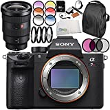 Sony Alpha a7R III Mirrorless Digital Camera with Sony FE 16-35mm f/2.8 GM Lens 9PC Accessory Bundle – Includes 64GB SD Memory Card + MORE