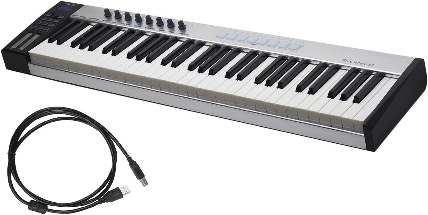 Muslady Midi Keyboard, 61 Portable USB MIDI Controller Keyboard 61  Semi-weighted Keys 8 RGB Backlit Trigger Pads LED Display with USB Cable:  Amazon.ca: Musical Instruments, Stage & Studio