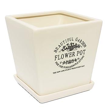 Blumentopf Untersetzer Quadratisch blumentopf untersetzer quadratisch keramik serie